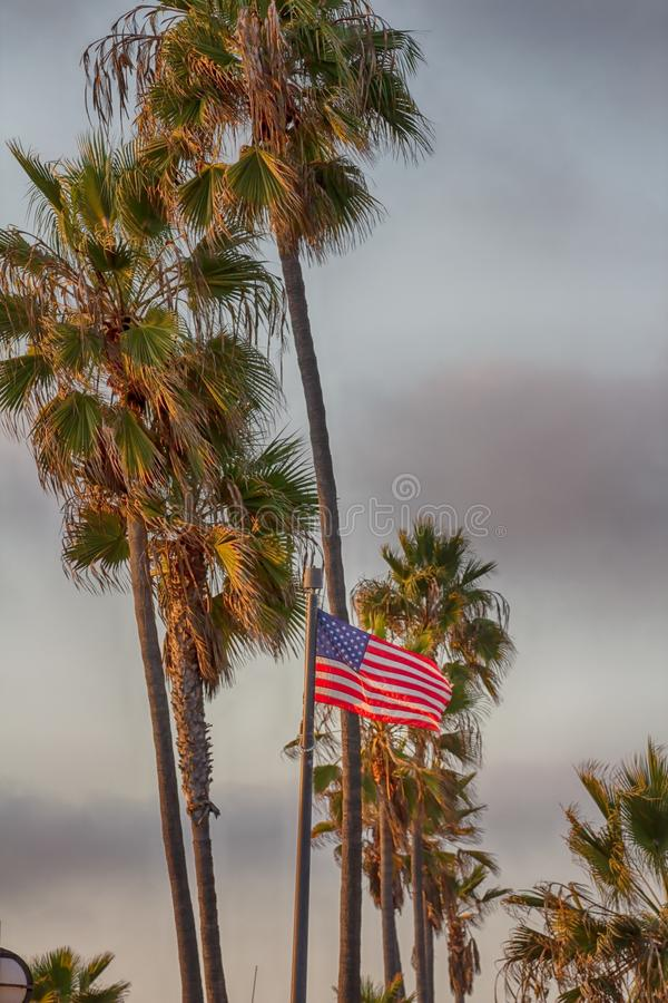 Bandera americana con algunas palmeras en el fondo imagenes de archivo
