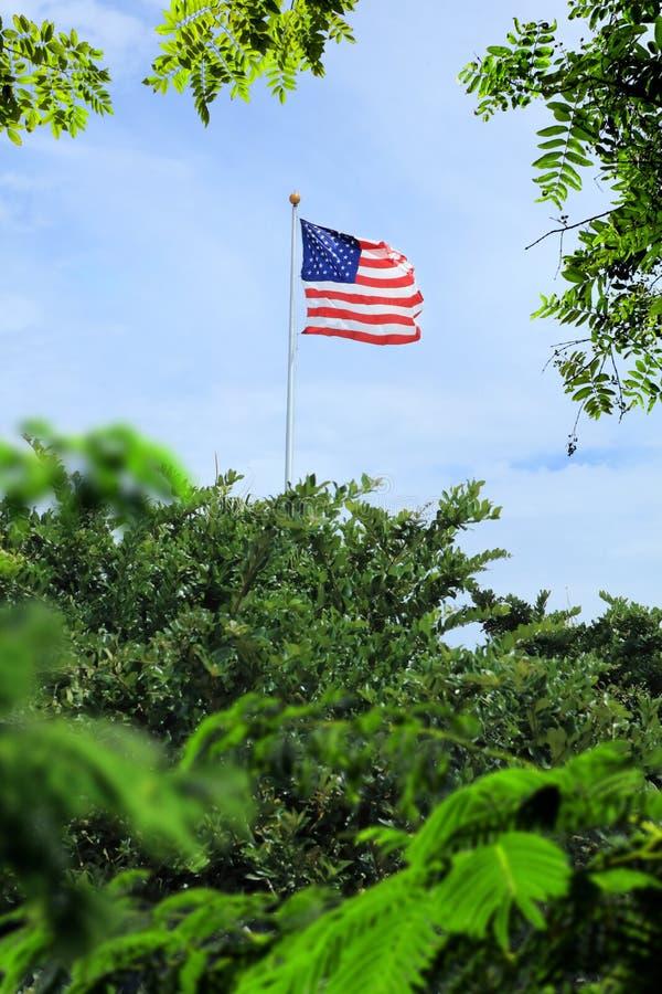 Bandera americana que agita colgada en el polo alto adentro fotos de archivo