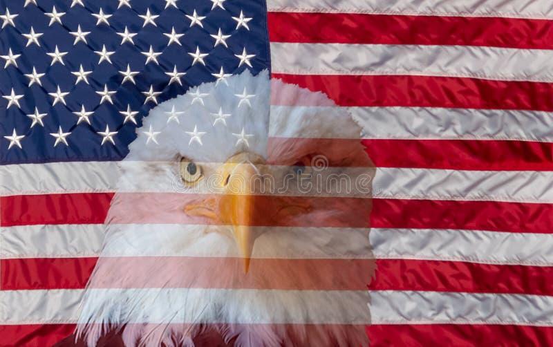 Bandera americana siempre vigilante y águila calva foto de archivo libre de regalías