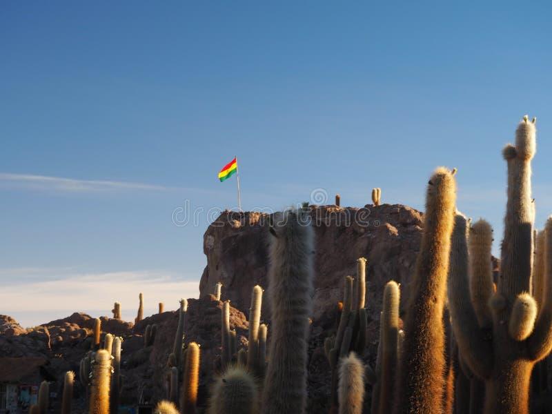 Bandera boliviana en la isla del cactus en Salar de Uyuni, Bolivia imagenes de archivo