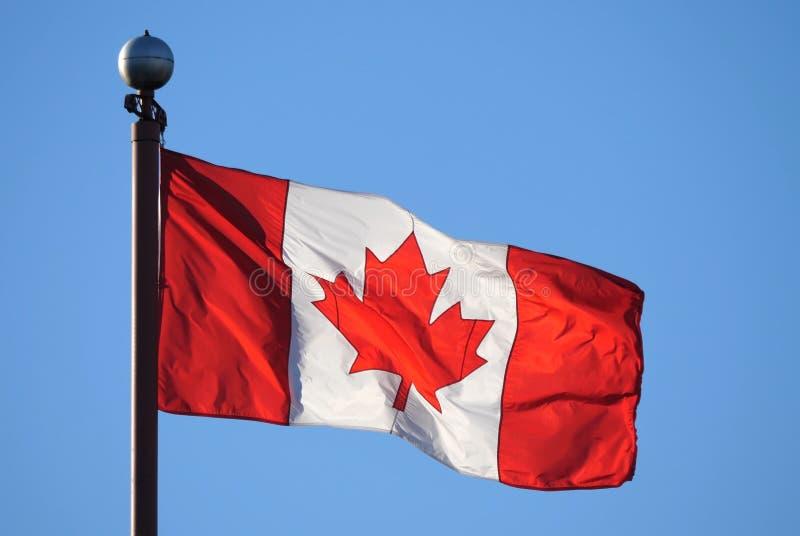 Bandera canadiense que agita contra el cielo azul imagen de archivo libre de regalías