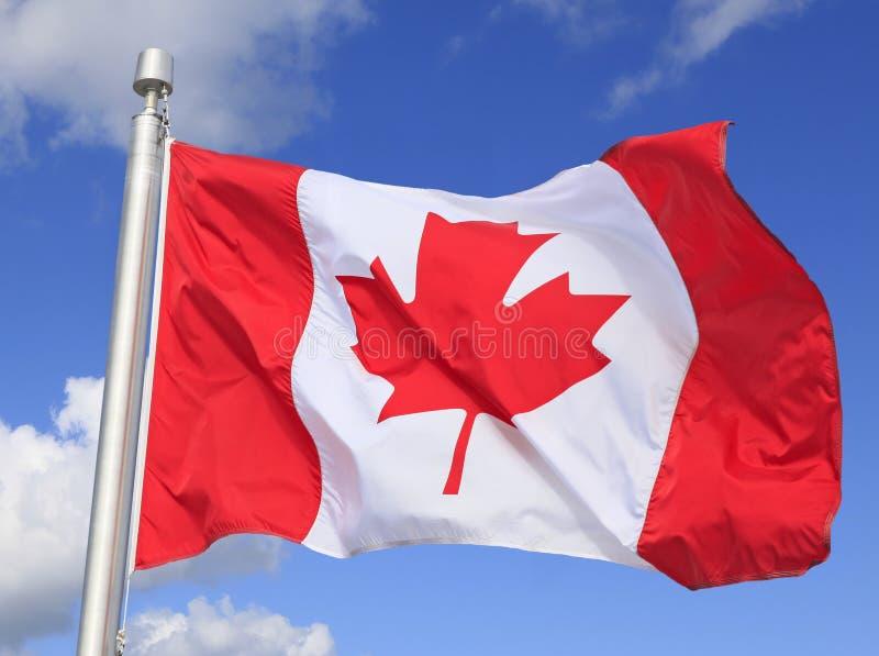 Bandera canadiense que agita en el viento imagenes de archivo