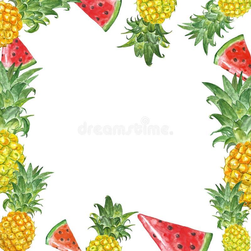 Bandera con las frutas tropicales exóticas en el fondo blanco Pineaple de la acuarela y marco de la sandía Ilustraci?n del verano libre illustration