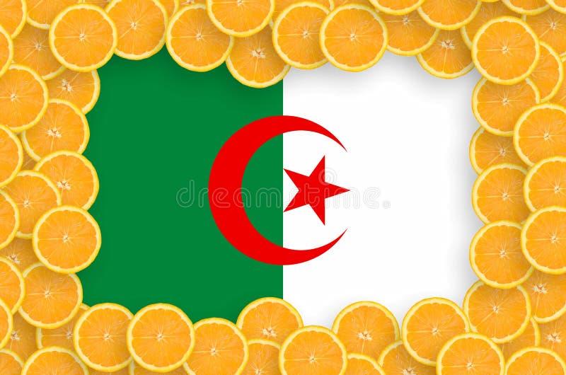Bandera de Argelia en marco fresco de las rebanadas de los agrios imágenes de archivo libres de regalías