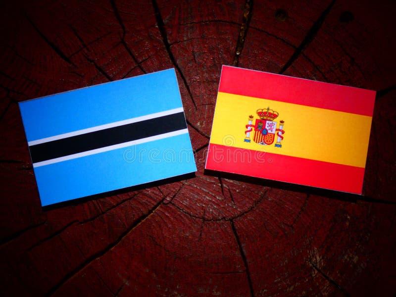Bandera de Botswana con la bandera española en un tocón de árbol fotografía de archivo libre de regalías