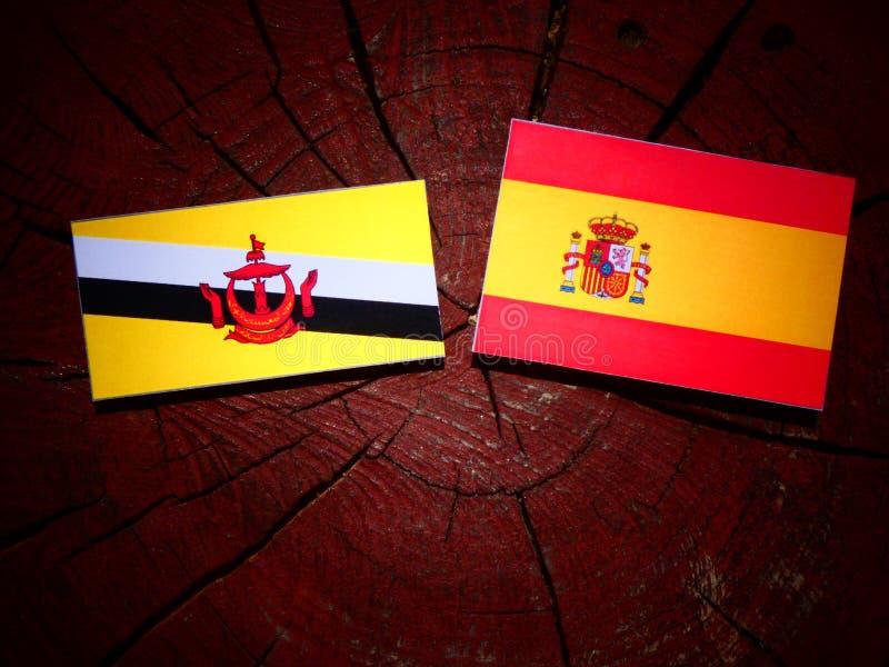 Bandera de Brunei con la bandera española en un tocón de árbol fotos de archivo libres de regalías