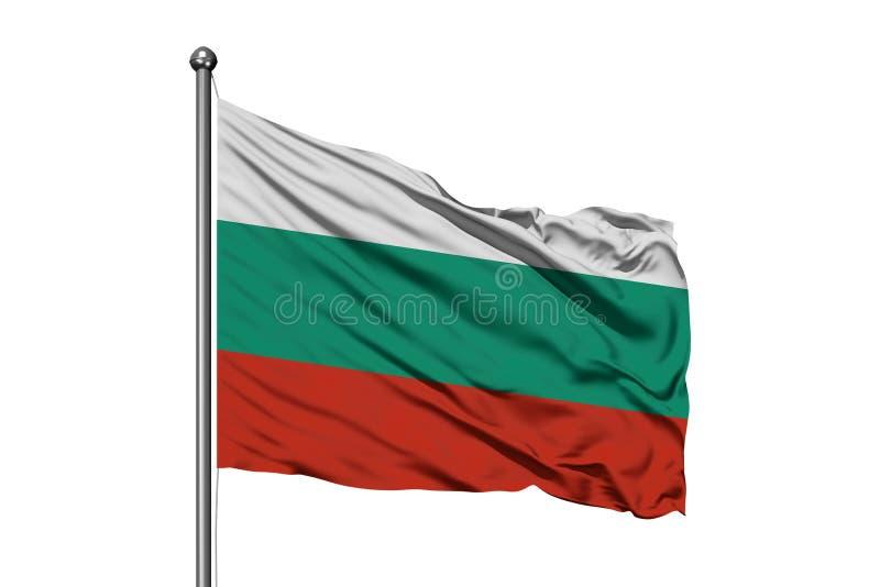 Bandera de Bulgaria que agita en el viento, fondo blanco aislado Indicador b?lgaro foto de archivo libre de regalías