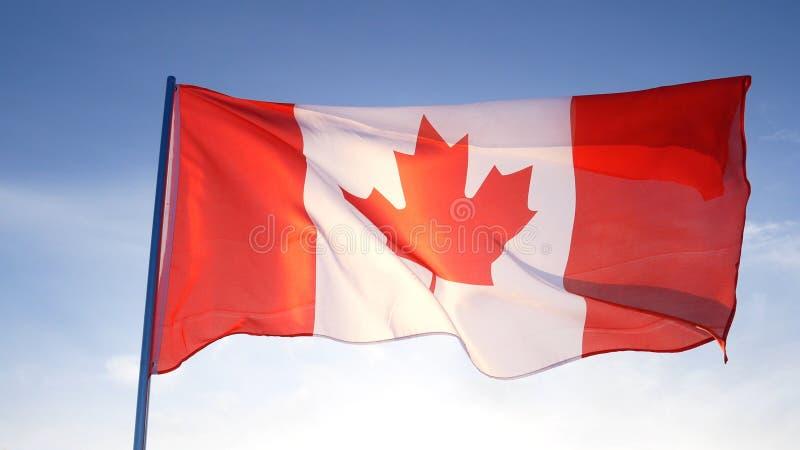 Bandera de Canadá en el cielo azul claro imagen de archivo