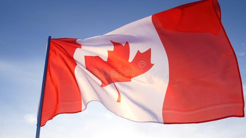 Bandera de Canadá en el cielo azul claro imagenes de archivo