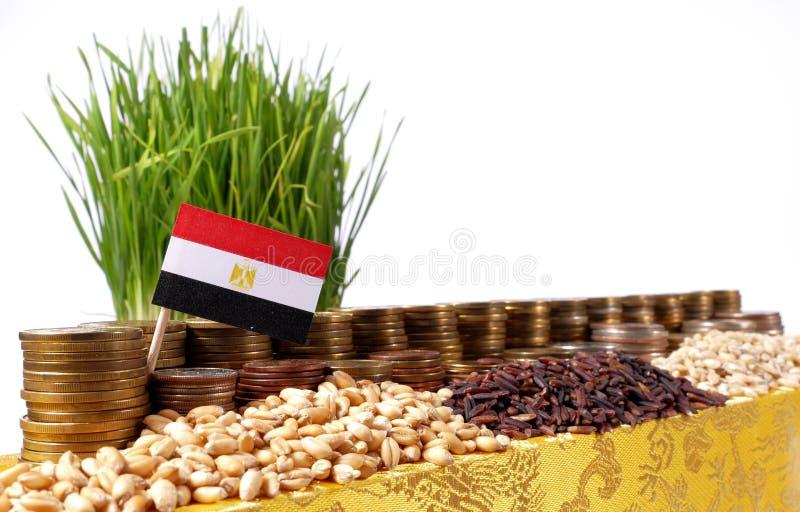 Bandera de Egipto que agita con la pila de monedas del dinero y las pilas de trigo imagenes de archivo