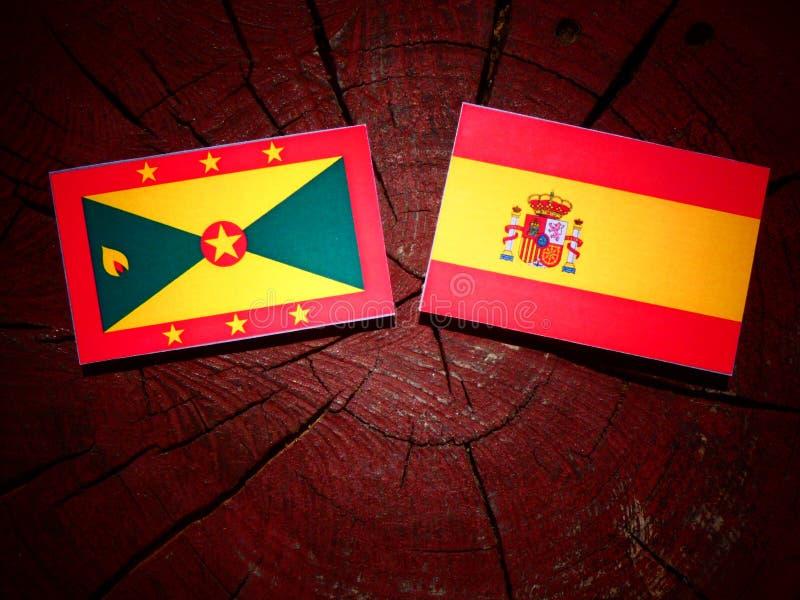 Bandera de Grenada con la bandera española en un tocón de árbol imágenes de archivo libres de regalías