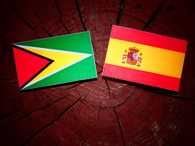 Bandera de Guyana con la bandera española en un tocón de árbol foto de archivo libre de regalías