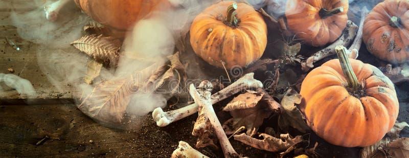 Bandera de Halloween con las calabazas y los huesos secados imágenes de archivo libres de regalías