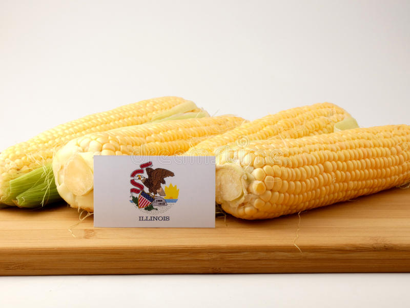 Bandera de Illinois en un panel de madera con el maíz aislado en vagos blancos foto de archivo libre de regalías