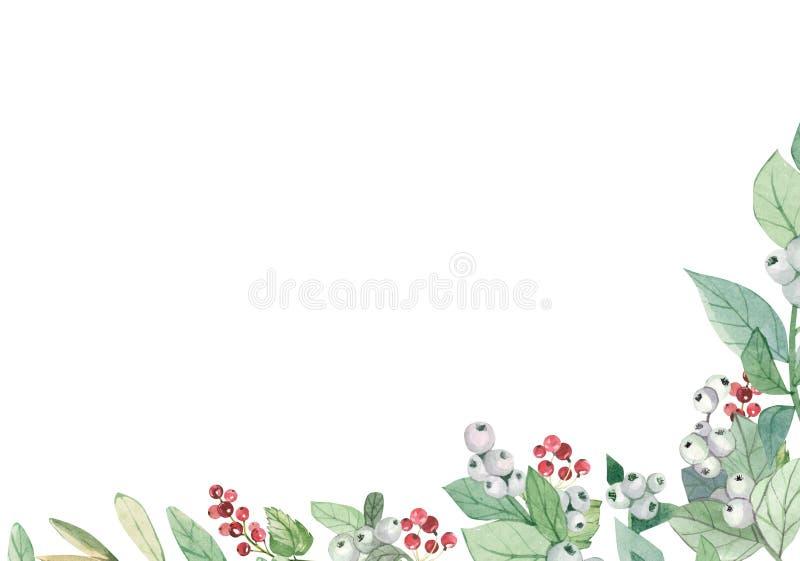 Bandera de invierno color agua con ramas y bayas rojas floridas Ilustración de diseño botánico para tarjetas de felicitación, mar libre illustration