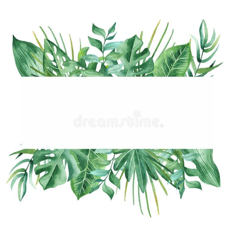 Bandera de la acuarela con las hojas y las flores tropicales, manchas de la acuarela ilustración del vector
