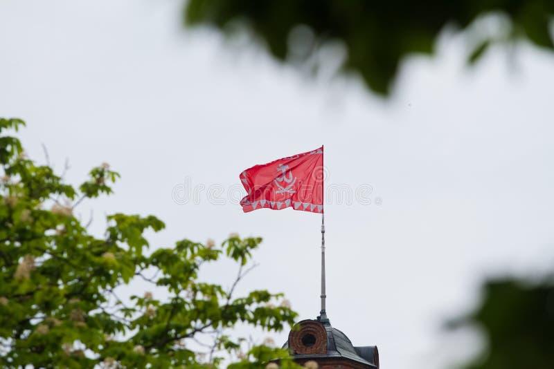 Bandera de la ciudad de Vinnytsia en torre de agua en los alborotos céntricos y las ondas en viento, flores borrosas de la castañ fotos de archivo