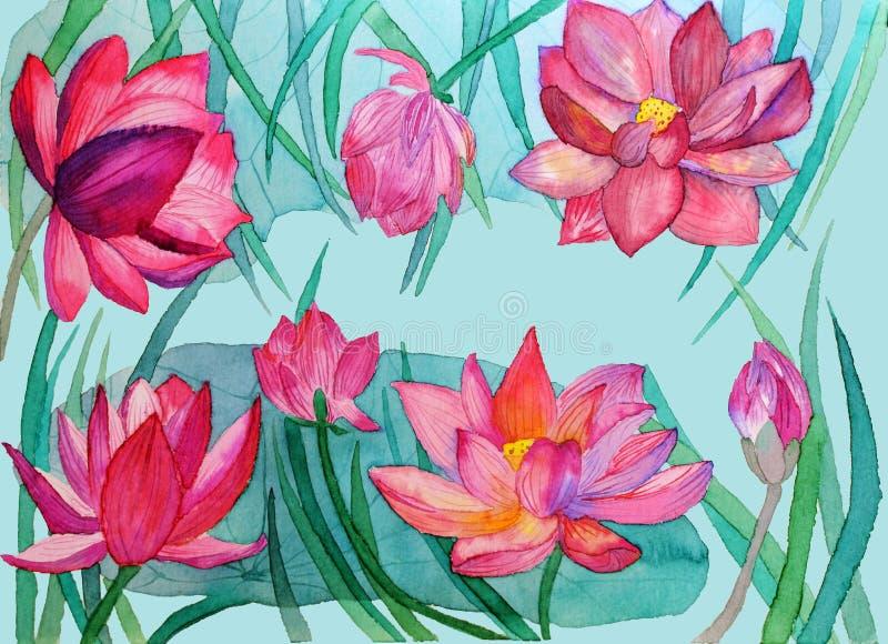 Bandera de la flor de loto con las hojas, lirio de agua del brote libre illustration