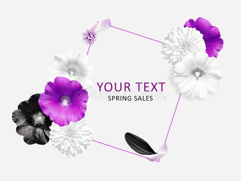 Bandera de la flor Rosa, flores negras blancas en el fondo blanco Lugar para el texto Malva, flores del Rudbeckia Fondo de la man ilustración del vector