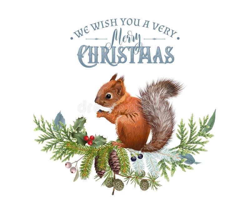 Bandera de la Navidad del vector con las ramas y la ardilla stock de ilustración