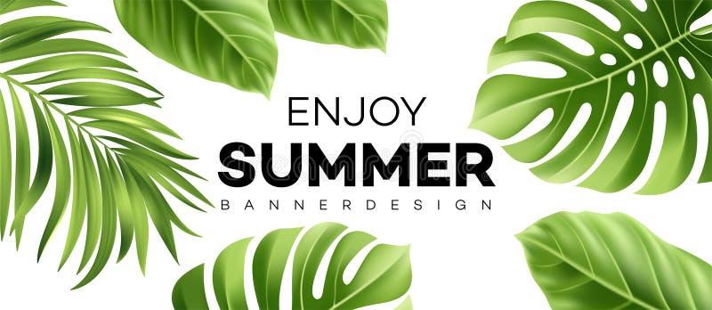 Bandera de la venta del verano con la planta tropical Ilustración del vector stock de ilustración