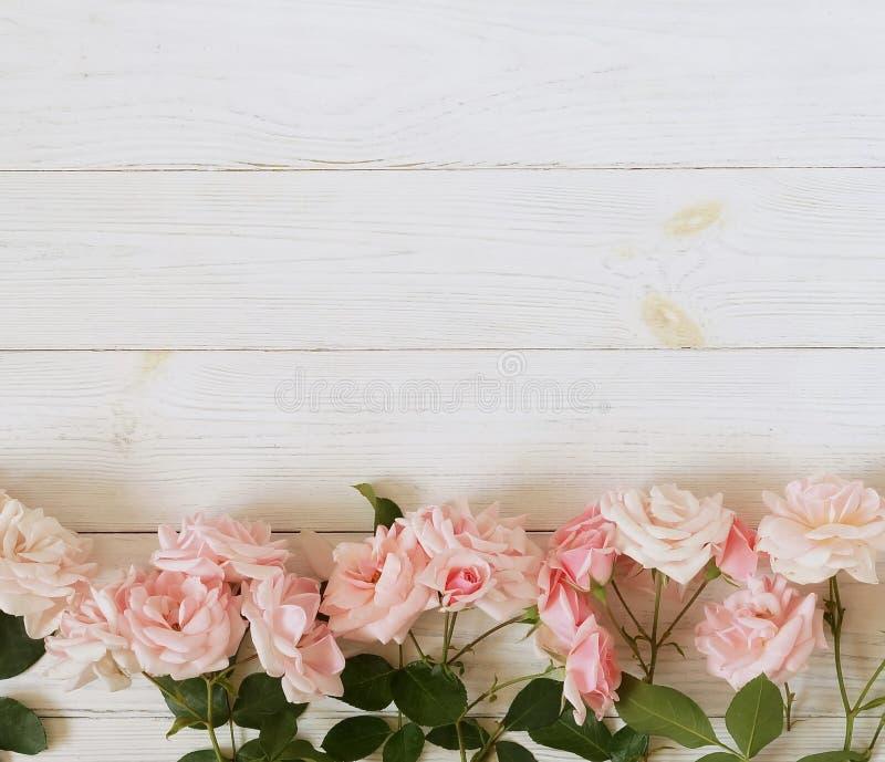 Bandera de las flores Background Ramo de rosas rosadas hermosas en el fondo de madera blanco fotos de archivo