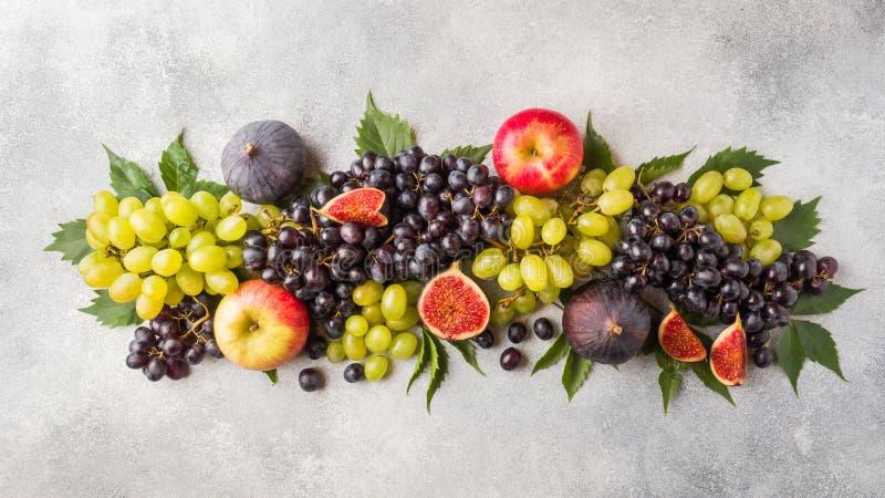 Bandera de las frutas frescas del otoño Uvas negras y verdes, higos y hojas en una tabla gris imagenes de archivo