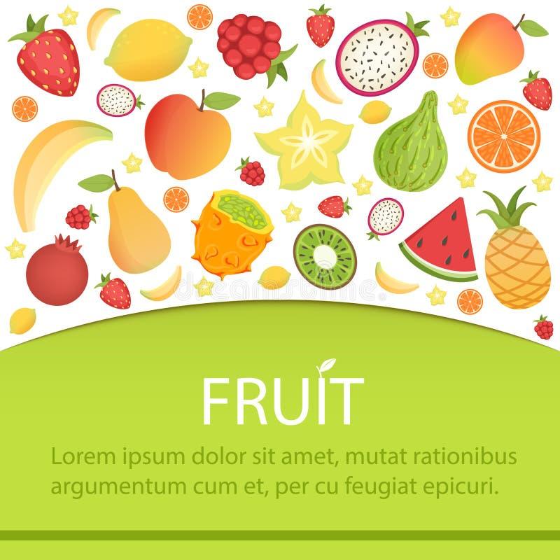 Bandera de las frutas tropicales, fondo del verano con las frutas tropicales, exóticas, del jardín y el espacio para el texto, el stock de ilustración
