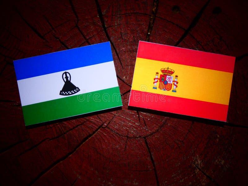 Bandera de Lesotho con la bandera española en un tocón de árbol foto de archivo libre de regalías