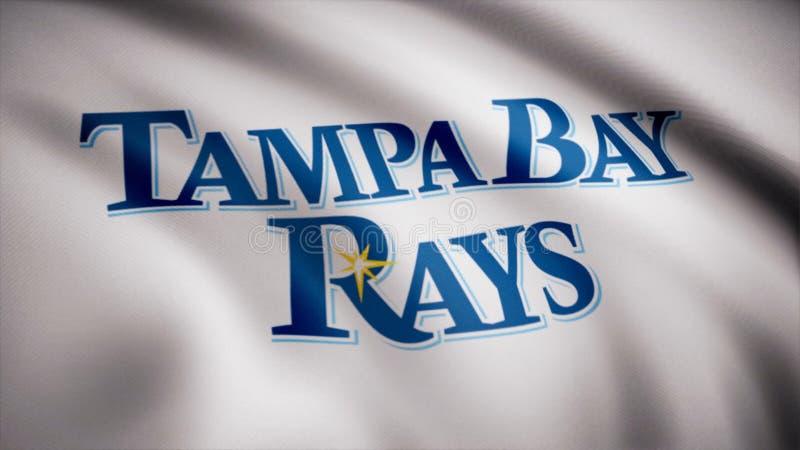 Bandera de los Tampa Bay Rays del béisbol, logotipo americano del equipo de béisbol profesional, lazo inconsútil Animación editor stock de ilustración