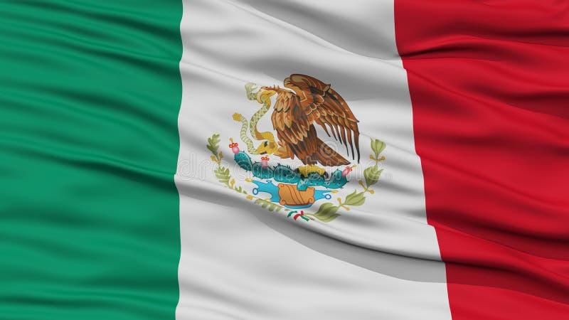Bandera de México del primer ilustración del vector