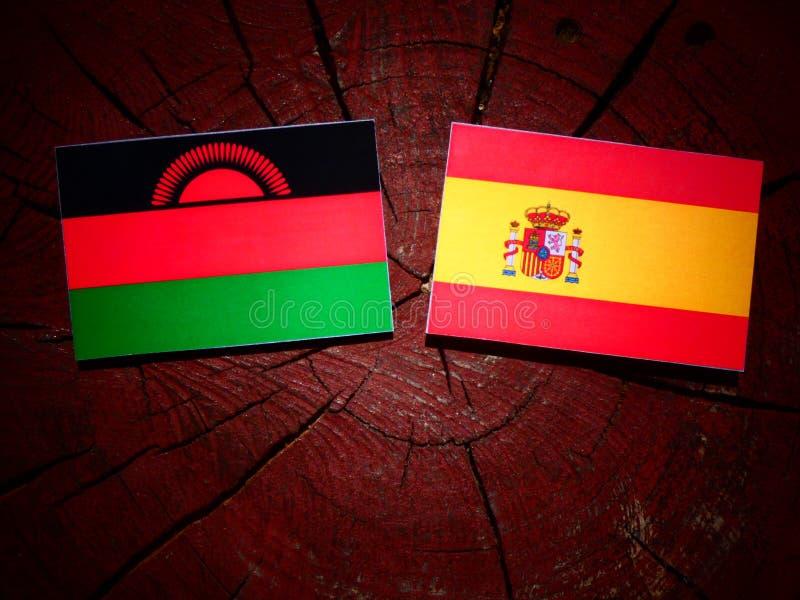 Bandera de Malawi con la bandera española en un tocón de árbol foto de archivo libre de regalías