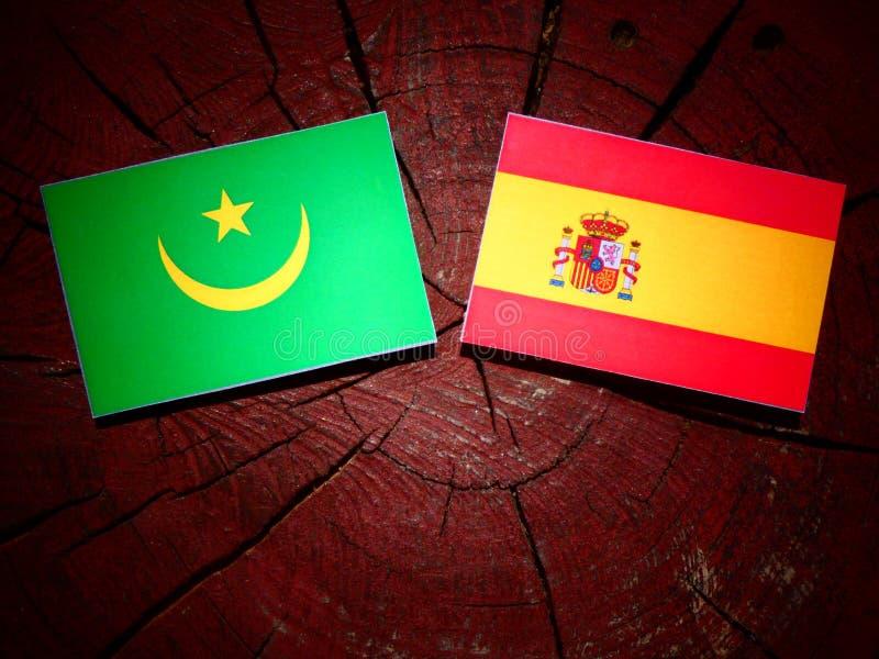 Bandera de Mauritania con la bandera española en un tocón de árbol fotografía de archivo libre de regalías