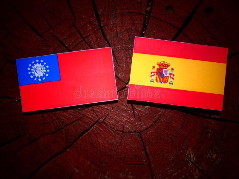 Bandera de Myanmar con la bandera española en un tocón de árbol imágenes de archivo libres de regalías