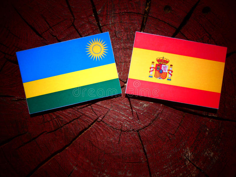 Bandera de Rwanda con la bandera española en un tocón de árbol imágenes de archivo libres de regalías