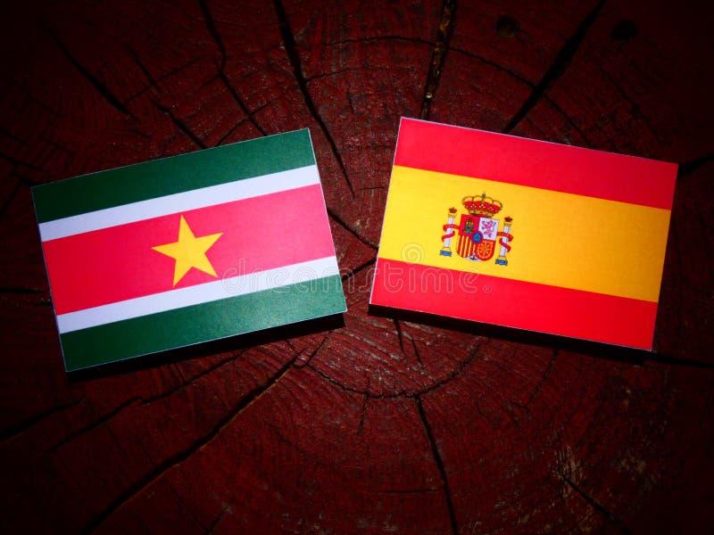 Bandera de Suriname con la bandera española en un tocón de árbol fotos de archivo