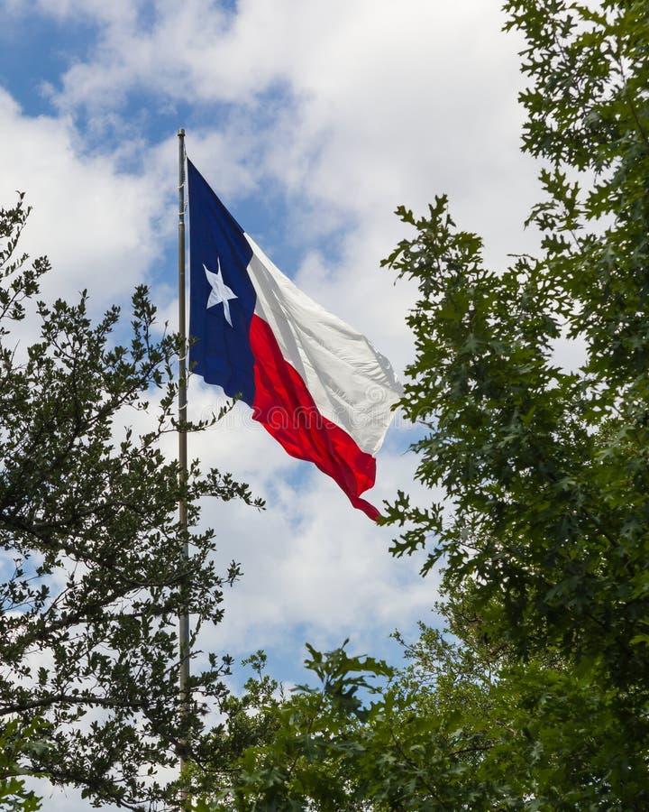 Bandera de Tejas en una brisa perezosa fotografía de archivo libre de regalías