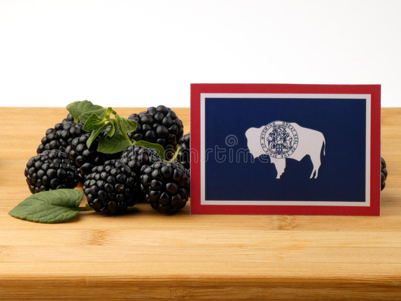 Bandera de Wyoming en un panel de madera con las zarzamoras aisladas en un w fotos de archivo libres de regalías