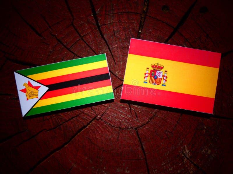 Bandera de Zimbabwe con la bandera española en un tocón de árbol imágenes de archivo libres de regalías