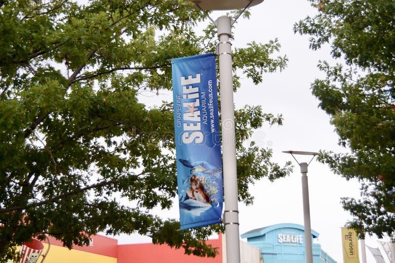 Bandera del acuario de la vida marina, vid Tejas imagen de archivo libre de regalías