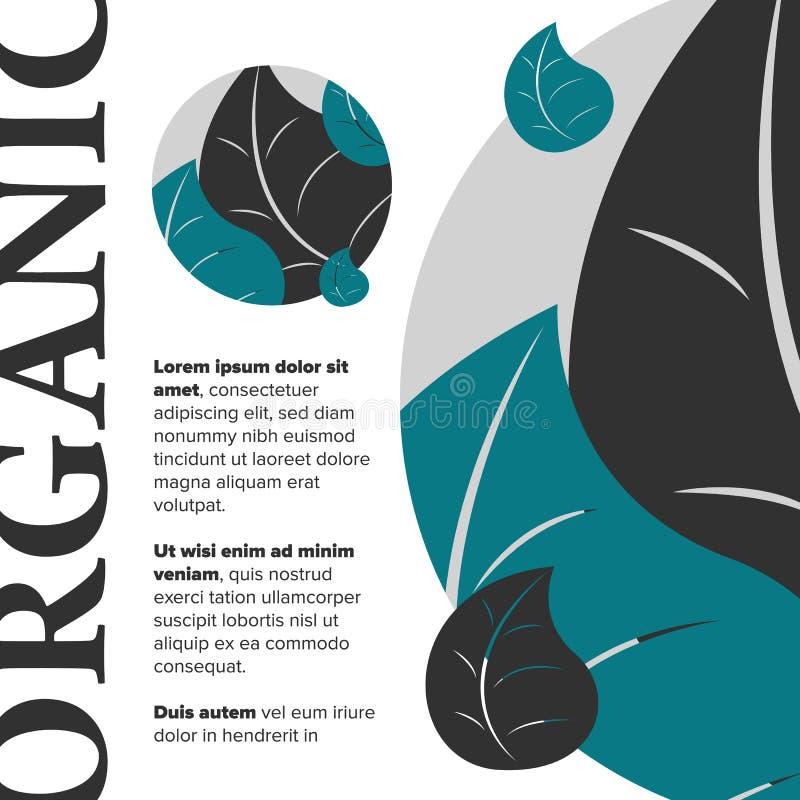 Bandera del alimento biológico stock de ilustración