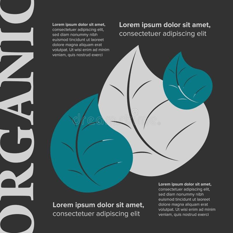 Bandera del alimento biológico ilustración del vector