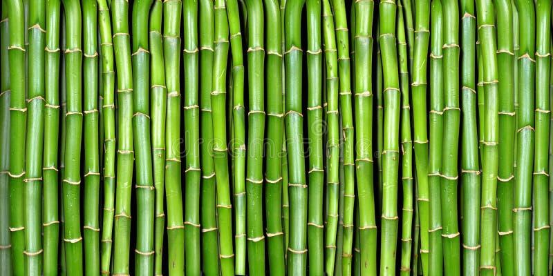Bandera del bambú imagen de archivo libre de regalías