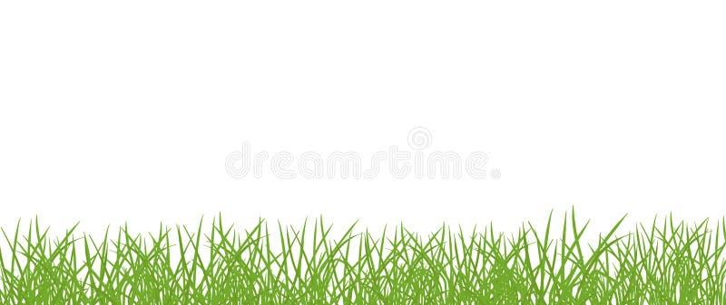 Bandera del césped de la hierba verde Fondo transparente aislado marco de la frontera Ejemplo plano del vector en el fondo blanco stock de ilustración
