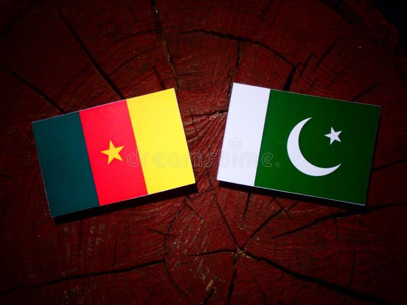 Bandera del Camerún con la bandera de Paquistán en un tocón de árbol aislado imagen de archivo libre de regalías