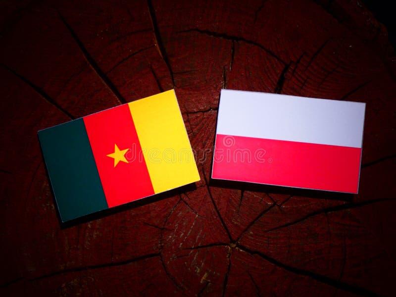 Bandera del Camerún con la bandera polaca en un tocón de árbol aislado fotografía de archivo libre de regalías
