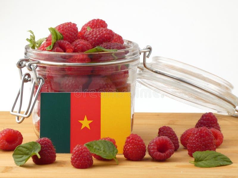 Bandera del Camerún en un panel de madera con las frambuesas aisladas en un w fotos de archivo libres de regalías