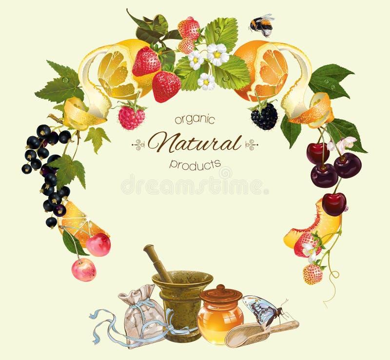 Bandera del cosmético de la fruta y de la baya stock de ilustración