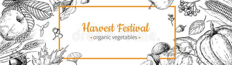 Bandera del festival de la cosecha Dé el marco exhausto del vector del vintage con las verduras, frutas, hojas Mercado de la gran stock de ilustración