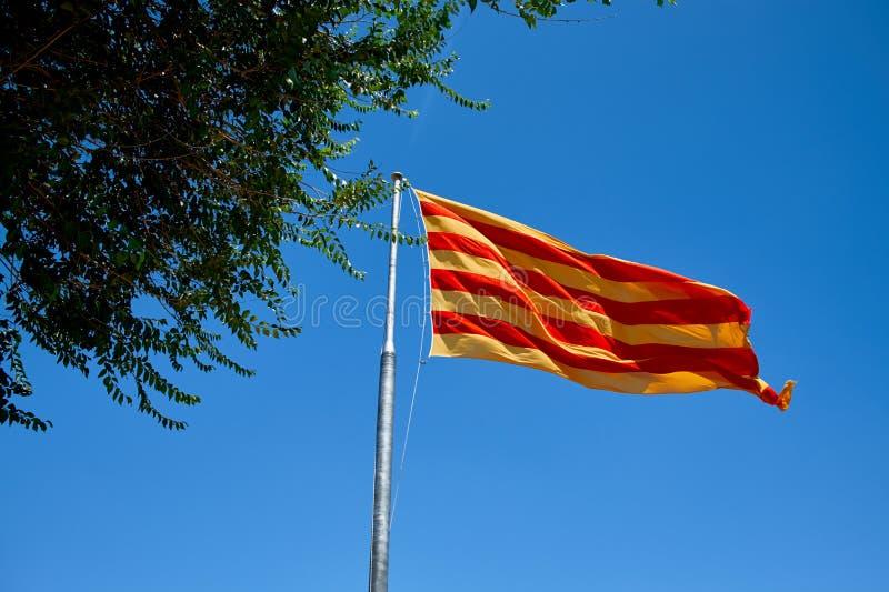 Bandera del vuelo de Cataluña contra el cielo azul Bandera de Cataluña que agita contra el cielo azul claro fotografía de archivo libre de regalías
